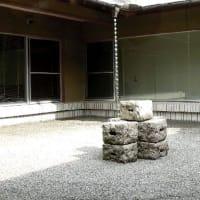 京都の冬の風物詩・大安本社工房 「千枚漬け込み」 の見学