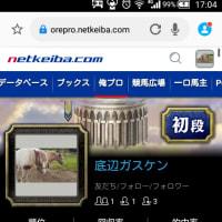 6/23 高知ファイナル!!予想!!ʕ•̀ω•́ʔ✧
