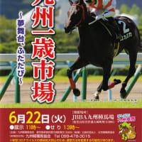 【九州1歳市場2021(Kyusyu Sale)】の「上場馬詳細情報」が公開