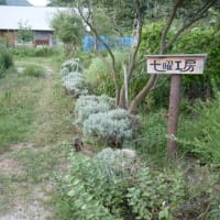 「一人で建てる木組みの家」と「海沿いのハーブ園」を売却いたします