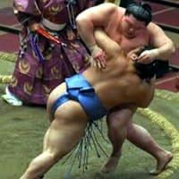相撲観戦道