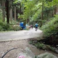 懐かしき歩荷ルートを歩く ダイトレの道 2