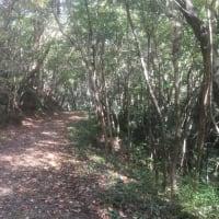 三木山森林公園を歩いてきた