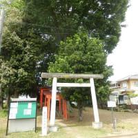 頂にムクノキそびゆ古墳かな(三変稲荷神社)