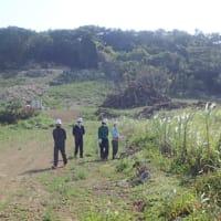 2月24日(水)、沖縄県が「魂魄の塔」横の鉱山開発地で遺骨収集作業に着手 --- 準備作業だが、数個の小さな遺骨が見つかった!