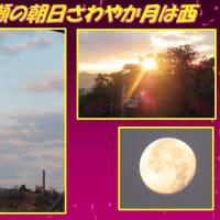 年の瀬の朝日さわやか月は西