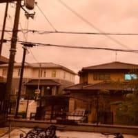 夕方、、空がね
