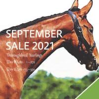 【セプテンバーセール2021(September Sale)】の「事前公開資料」が公開