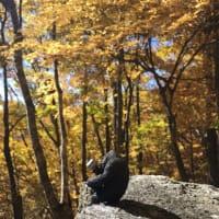 瑞牆山で紅葉満開
