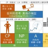 CP(厳格さ)とA(合理性)~批判的思考と自我状態のバランス~