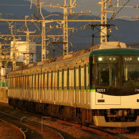 2019年2月12日 京阪本線 淀  9051F