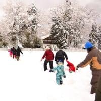 のあそび2月 雪中運動会