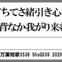 万葉短歌3536 赤駒を3281