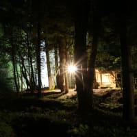 春の「玉簾の滝」ライトアップ