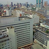 6月の東京出張