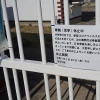犬吠埼灯台の参観休止中