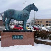 「馬市の値段、高く値がついた馬は少なく、結構、安い取引値が多かった」 FMくしろ「歴史探訪」
