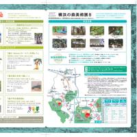 森ラボ2015 横浜の森美術展8 & 森アートランドまち