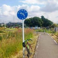 初の中川から「道の駅ごか」までのプチブルベお疲れさまでした!