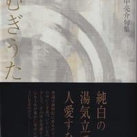 野中亮介・句集『つむぎうた』ふらんす堂