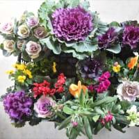 花の買い出し (No 2327)