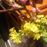 今日の歳時記、桃の花