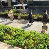 東京都心の人々の服装