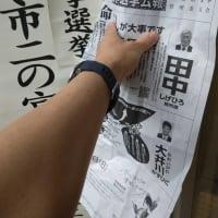 県知事選挙