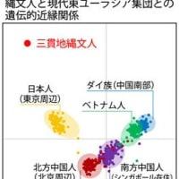 YAP遺伝子にみる日本人の特異性①