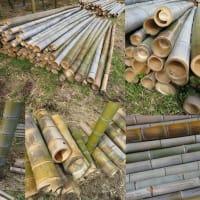 竹やぶ伐採風景
