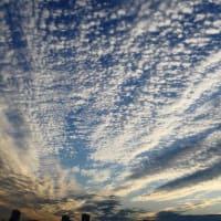 なんか雲の形が連日よくない