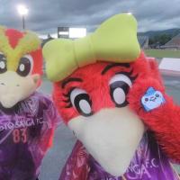 6/15 第18節 FC琉球戦 (京都・西京極競技場)