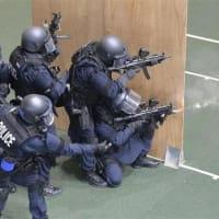 ☆沖縄に国境離島警備隊発足 一方 中国海警はベトナム船に激突して沈める