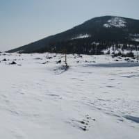 北八ヶ岳  スノーシューで散歩