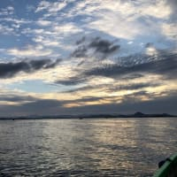 10月20日T&S釣り大会のまとめ。