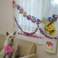 ドタバタの誕生日