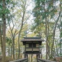 秋の逆井城