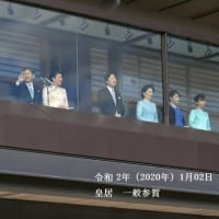 Japan's Emperor Naruhito maked 1st New Year greetings to public 2020年01月02日