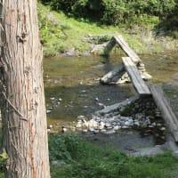 四万十の記憶2「早瀬の流れ橋」