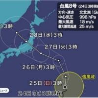 今週から来週は一番の猛暑だそですが、台風が...( ; ゚Д゚)。
