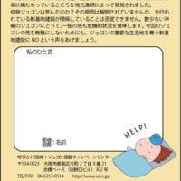 OKINAWA じゅごんを救え!大騒ぎキャンペーン!  実施中!!
