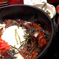 豚バラ蒲焼丼を頂きました。 at ニユートーキヨー庄屋 新青山ビル店