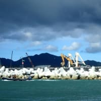 今日も辺野古の海の破壊が進められている
