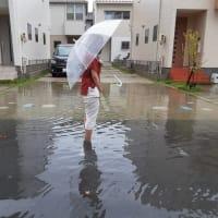 *村ちゃんの歴史ぶらり旅!令和2年9月7日(午前10時頃・稲沢市駅前4丁目) *大型台風10号による大雨にて我が家の前の道路冠水!