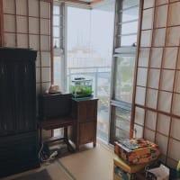 和室BEFORE/AFTER