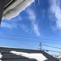 急に大雪~新潟市②