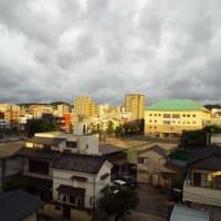 2020年07月07日(火) 曇り、のち、 薄陽が射したり、目が降ったり。(昨夜、熱帯夜) 「七夕」 <小暑>