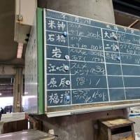 小田原の魚「鰆(サワラ)」|株式会社JSフードシステム