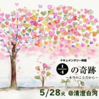 2019年6月10日(月)映画1/4の奇跡 小規模上映会@清澄白河 のお知らせ