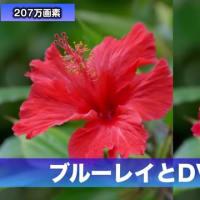 DVD blu-ray(ブルーレイ)違い(画質/容量/規格)を解説 買うならどっち?